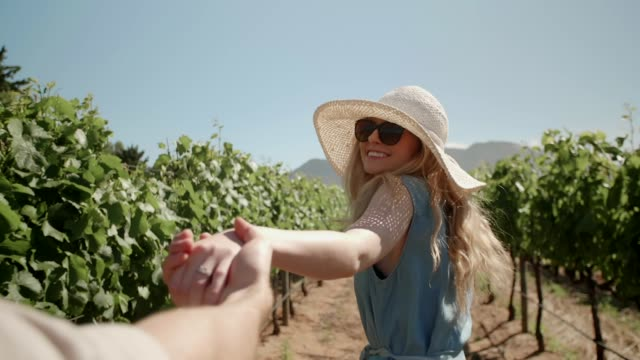 paar in der liebe zu fuß durch weinberge - hände halten stock-videos und b-roll-filmmaterial