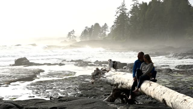 Couple looking away while relaxing on drift wood