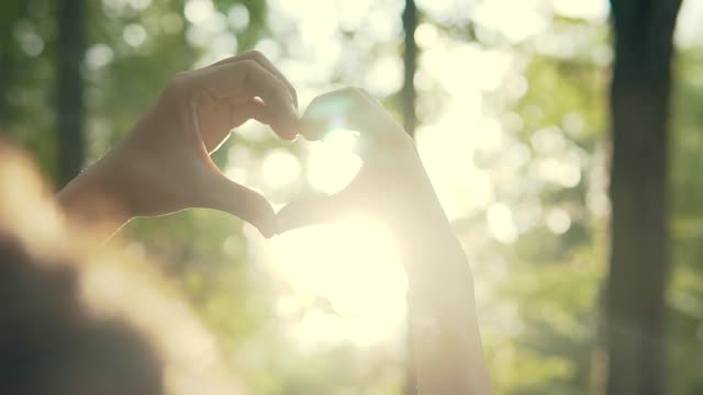 vídeos de stock, filmes e b-roll de casal fazendo formato de coração com as mãos ao pôr do sol ao pôr do sol no parque - mão
