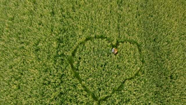 AERIAL Couple making heart symbol in the field video