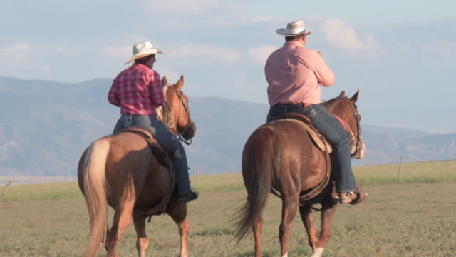 couple of ranchers riding together on a grass plain - rancher video stock e b–roll