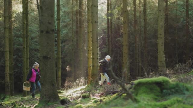 Ett par seniora kvinnor vandring genom en skog video