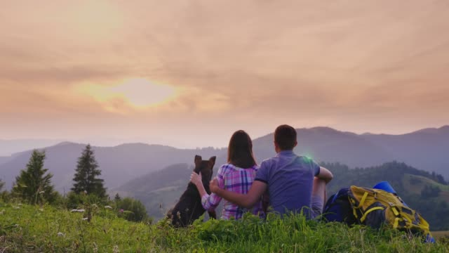 A couple of tourists with a dog admire the beautiful scenery in the mountains. They sit on the ground, next to them are their backpacks, a rear view