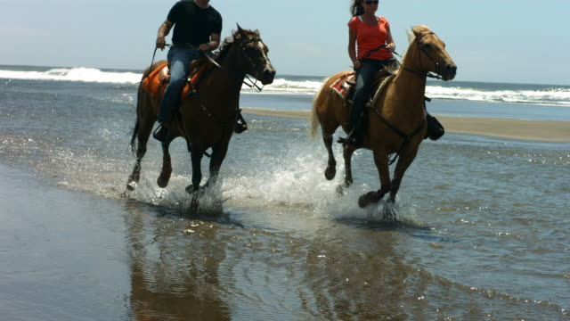 Couple riding horses on beach, slow motion video