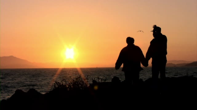 Couple Silhouette in May (HD) A couple walks across frame with the sun setting in the distance. (1080i source) 笹 stock videos & royalty-free footage