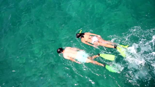 Couple snorkeling video