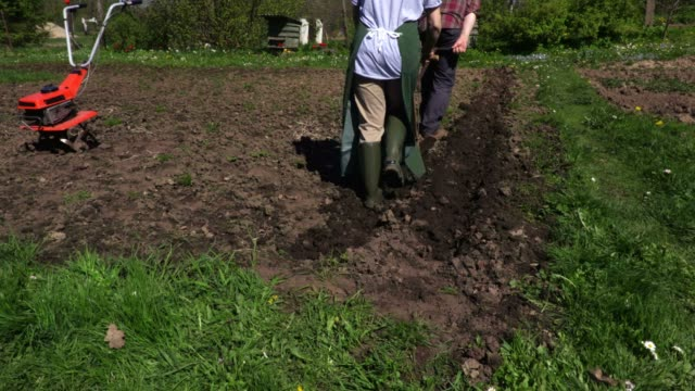 vídeos de stock e filmes b-roll de couple using vintage plow - agricultora