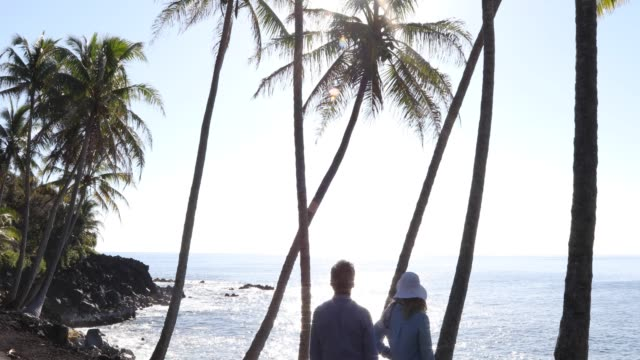 Video Couple walk out to view over tropical coastline