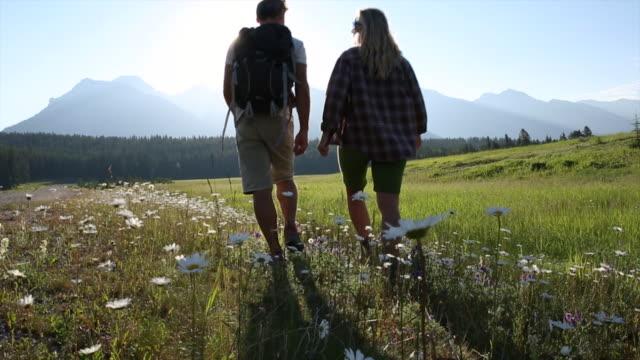 couple walk through mountain meadow, talking - mountain top filmów i materiałów b-roll