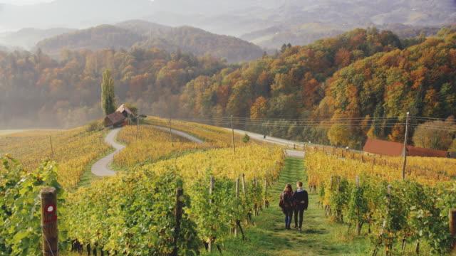 DS Couple walking among vineyards