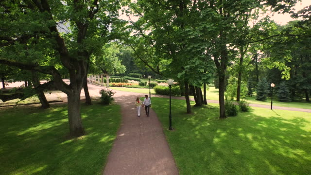 Couple Walking in Park. Aerial Shot Couple Walking in Park. Aerial Shot. Shot on RED Cinema Camera in 4K (UHD). natural parkland stock videos & royalty-free footage