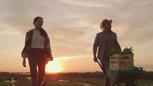 SLO MO Couple walking in the field after work is done