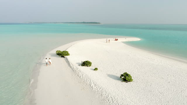 ws couple walking on tranquil sunny tropical beach,maldives - grandangolo tecnica fotografica video stock e b–roll