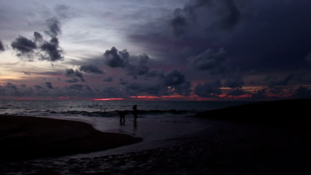 A couple walking together on beach,at sunset. video