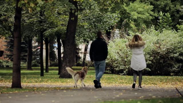 Couple walking together with dog husky in park at the autumn day, rear view, slow motion video