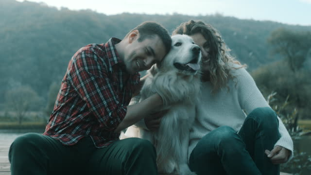 Couple with a dog cuddling by lake Young couple with a retriever dog cuddling by lake young couple stock videos & royalty-free footage