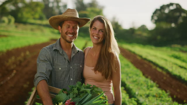 couples that farm together, stay together - lattuga video stock e b–roll