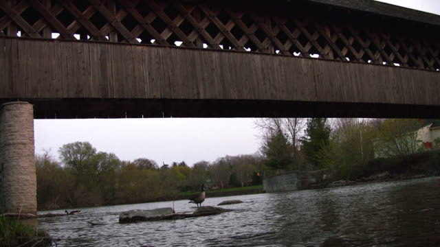 Covered Walking Bridge video