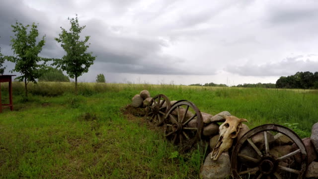 Cow skull on stones with wooden wheels and rain clouds with drops, time lapse video