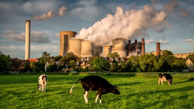 stockvideo's en b-roll-footage met cow vs power plant - broeikasgas