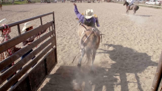 cowboy bull riding - rodeo stock videos and b-roll footage