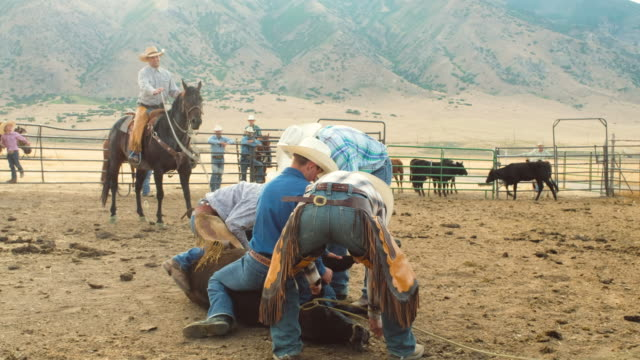 Cowboy Cattle Branding Operation video