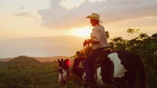 Cowboy Horseback Riding Cowboy horseback riding at sunset horseback riding stock videos & royalty-free footage
