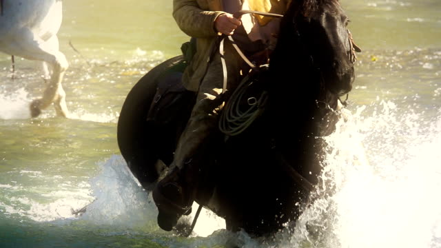 Cowboy on horseback Crossing river in slow motion video