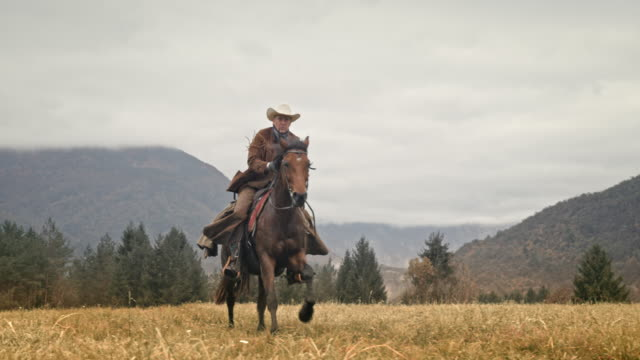 SLO MO Cowboy riding a galloping horse across mountain meadow