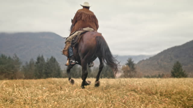SLO MO Cowboy riding a galloping horse in the mountains video