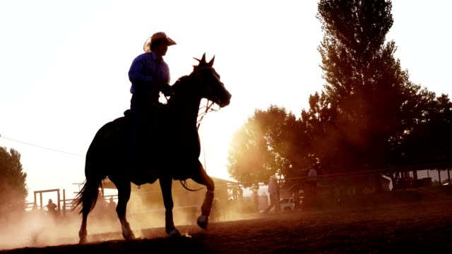 cowboy riding horse at sunset - rodeo stock videos and b-roll footage