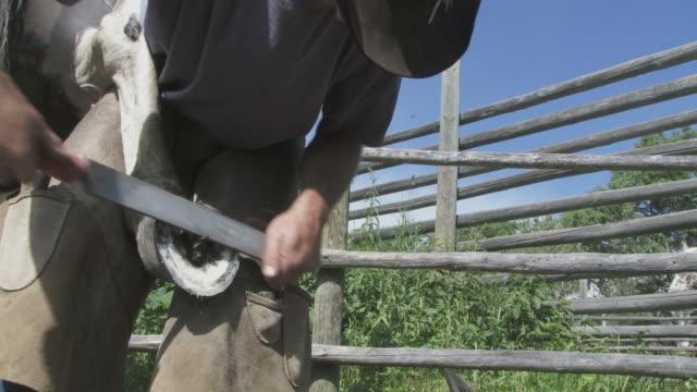 Cowboy shoes a horse video