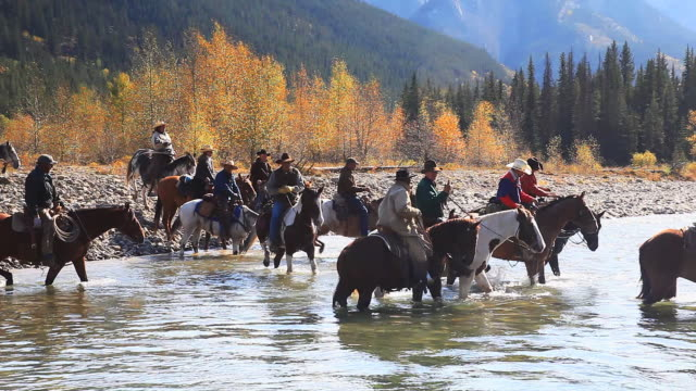 Cowboys and Cowgirls crossing river on horseback video