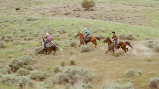 Cowboys and Cowgirls on Horses A group of cowboys and cowgirls riding horses in the desert wilderness of Utah, USA. prairie stock videos & royalty-free footage