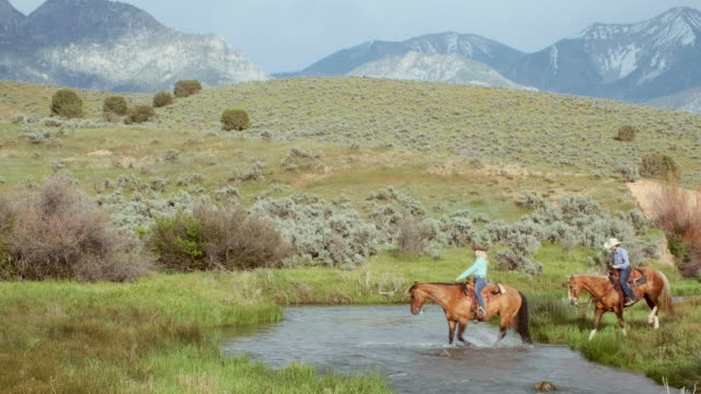 Cowboys and Cowgirls on Horses A group of cowboys and cowgirls riding horses in the desert wilderness of Utah, USA. horseback riding stock videos & royalty-free footage