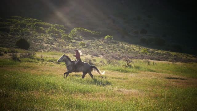 cowboys and cowgirls riding horses in the wild - mustang video stock e b–roll