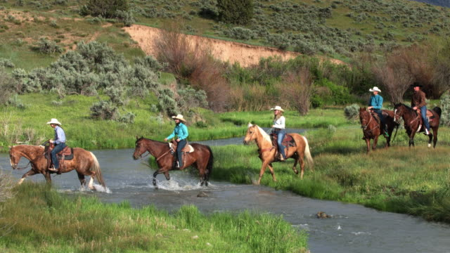 cowboys and cowgirls riding through river - stile del xix secolo video stock e b–roll
