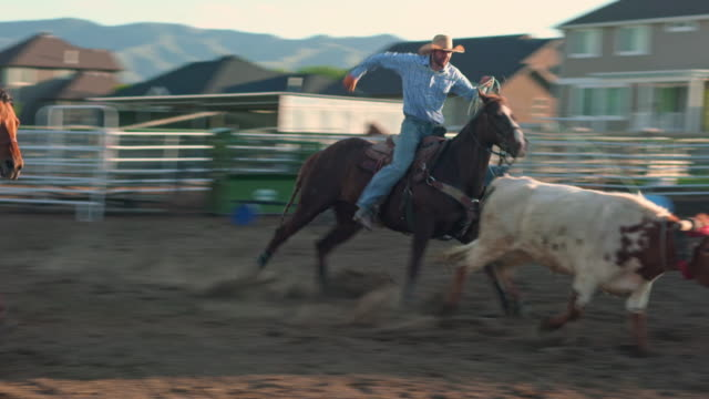 Cowboys are steer roping on a ranch