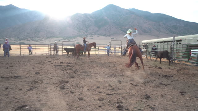 Cowboys competing at a rodeo Cowboys competing at a rodeo cowgirl stock videos & royalty-free footage