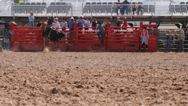 cowboys competing in the bull riding event at a rodeo - rodeo stock videos and b-roll footage