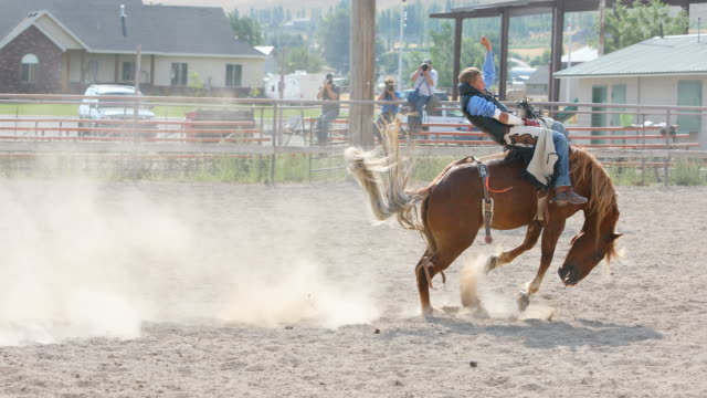 Cowboys Riding Bucking Broncos at a Rodeo
