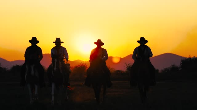 Cowboys riding horse in wild field Cowboys riding horses in wild field at sunset hd format stock videos & royalty-free footage