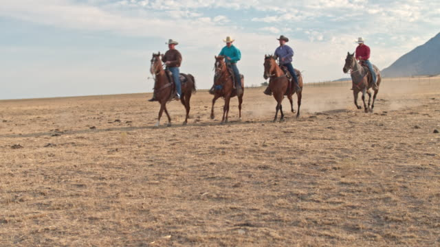 Cowboys roping An Escaped Bull On The Ranch Real time video of cowboys going to rope an escaped bull on the ranch. rancher stock videos & royalty-free footage