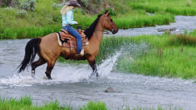 Cowgirl Crossing River on Horseback Woman in Western attire riding on horseback through a slow moving river. cowgirl stock videos & royalty-free footage