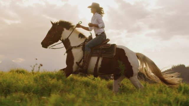 騎乗位乗馬 - 動物に乗る点の映像素材/bロール