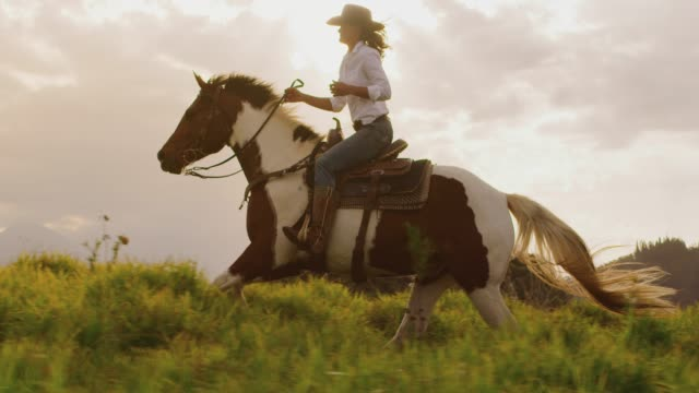 Cowgirl horseback riding Amazing slow motion horseback riding at sunset, cowgirl riding brown and white horse fast through green fields, tracking shot horseback riding stock videos & royalty-free footage