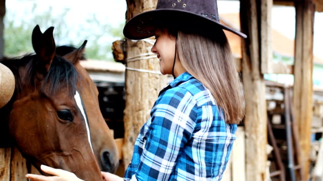 cowgirl kisses her horse in a barn - stallone video stock e b–roll