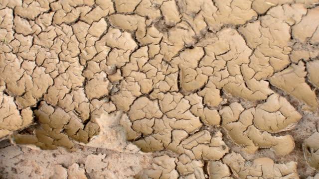 cracked soil video