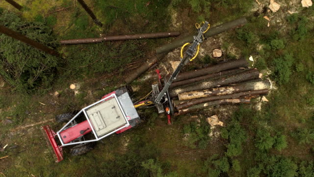 AERIAL CLOSE UP: Crane loading cut logs & tree trunks on logging truck in nature video