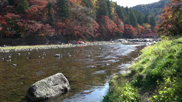 クレーン ショット: 秋赤のまま名古屋でこうらんけい森林公園 - トヨタ点の映像素材/bロール